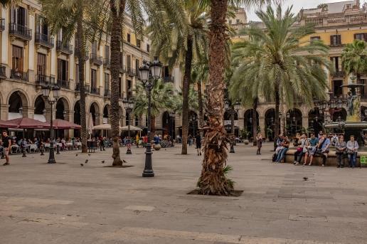 barcelona201905_plazareal-2656